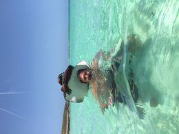 Snorkeling , Margie C - June 2015