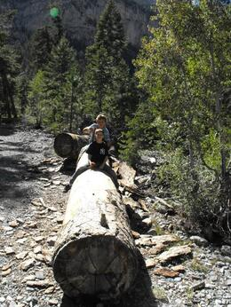 Hiking at Mt. Charleston, Traveler from Texas - October 2010