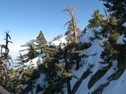 Snow on the top of San Jacinto, Thomas W - March 2010