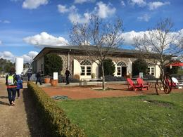 Winery , annie - November 2016