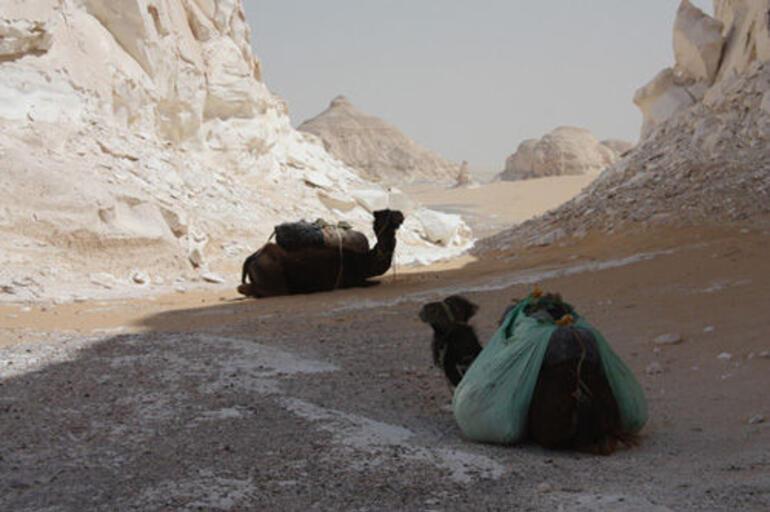 desert-05 - Cairo