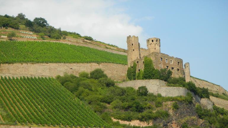 DSCN1261 - Rhine River