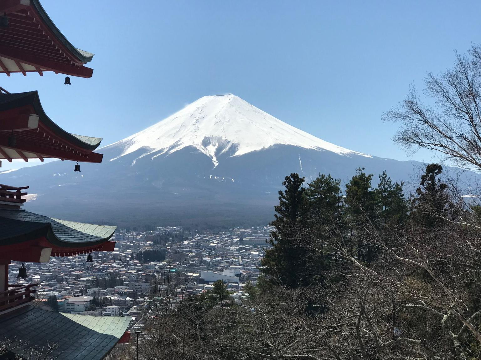 MÁS FOTOS, Private Tour: Chartered Car to Mt. Fuji Lake Kawaguchiko or Hakone and Lake Ashi