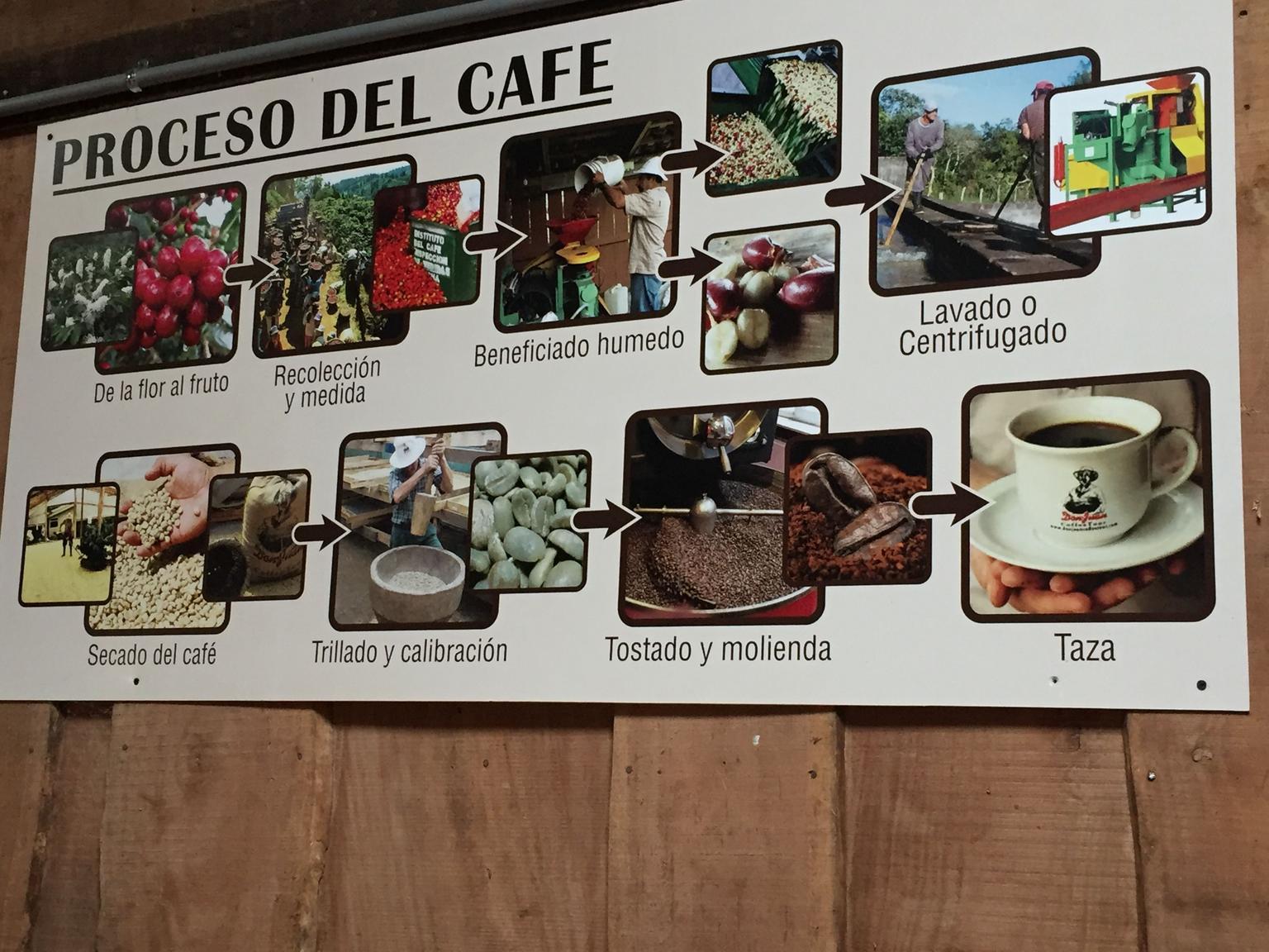MÁS FOTOS, Excursión de café, chocolate y caña de azúcar en Monteverde