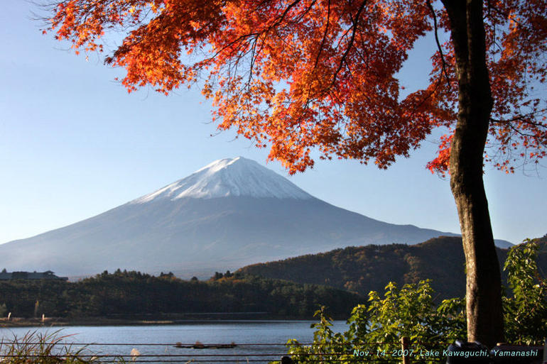 Mt. Fuji 5th Station, Lake Kawaguchi & Seasonal Fruits Picking from Tokyo photo 20