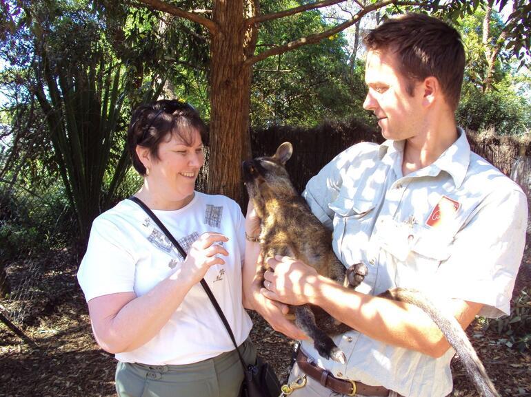 Fun with a kangaroo - Sydney