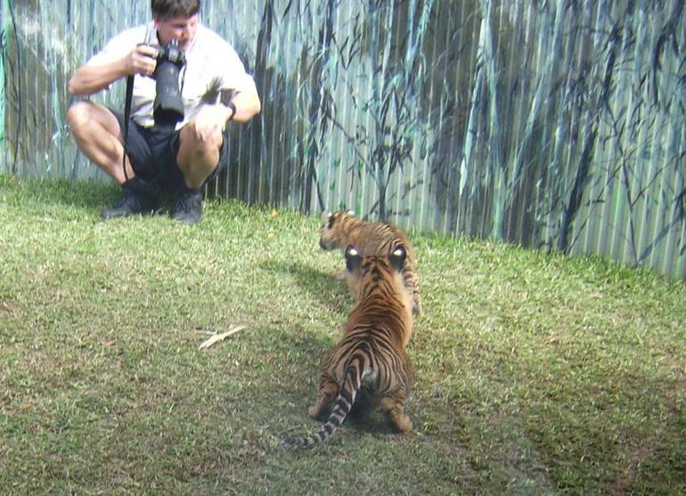 Too cute! - Brisbane