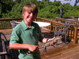Holding a baby Alligator - August 2014