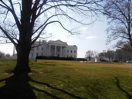 la Casa Blanca por la parte de atrás , ROSA T - April 2013