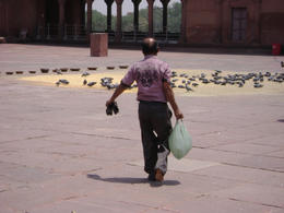 Birds are fed in the central courtyard of the Delhi Mosque , Balti-most - May 2011