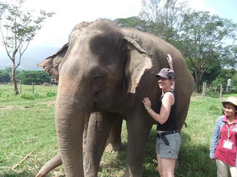 Elephant Conservation Center - Chiang Mai