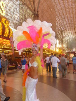I took a picture of this nice lady on fremont street. Nice feathers!! , Jasmine H - February 2011