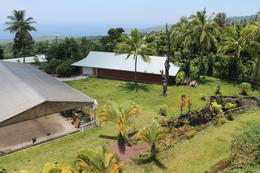 View of Kona Coffee - August 2014