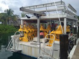 Weird contraptions, but they make and quot;scuba diving and quot; a breeze! , Scott R - September 2012