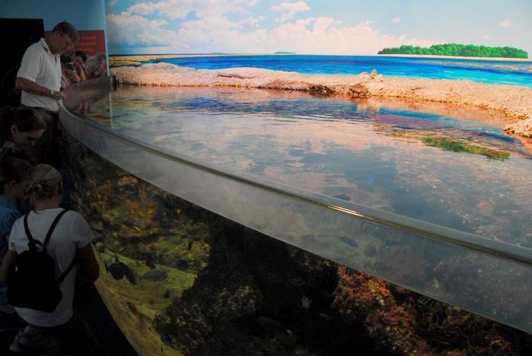 Sydney Aquarium - Sydney
