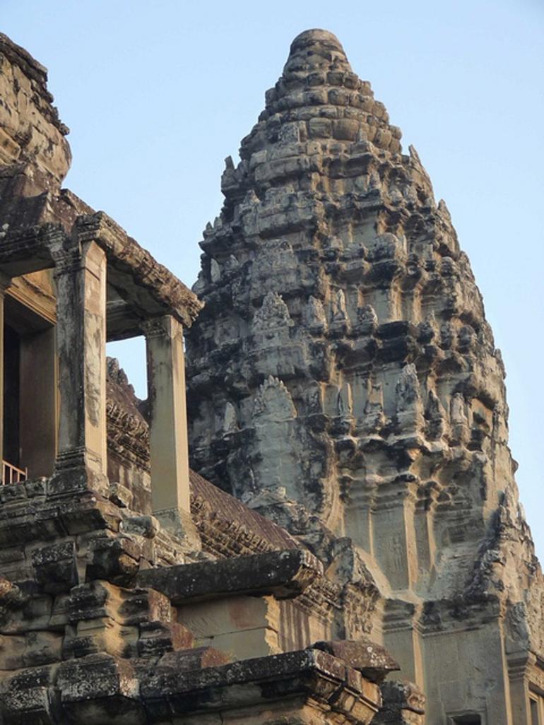 Angkor Wat Lotus - Angkor Wat