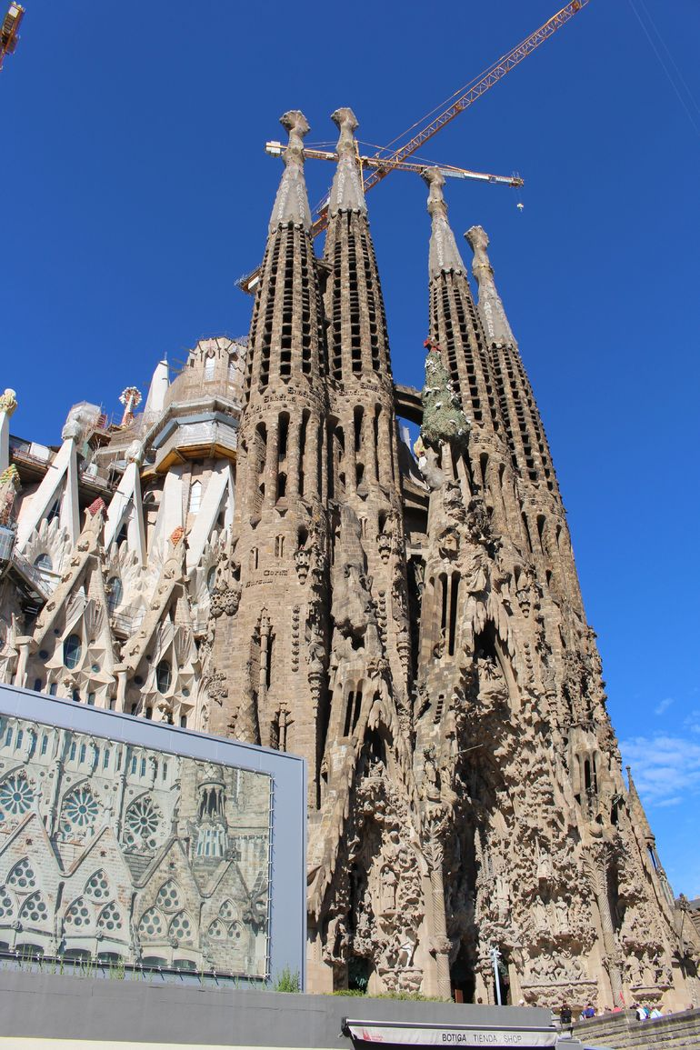 Skip the Line: Best of Barcelona Private Tour including Sagrada Familia photo 13