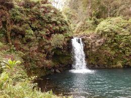 Waikamoi Falls on The Road to Hana , children - January 2017