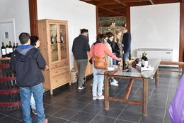 Our group sampling wine and olive oil at a small family winery , Richard S - February 2017