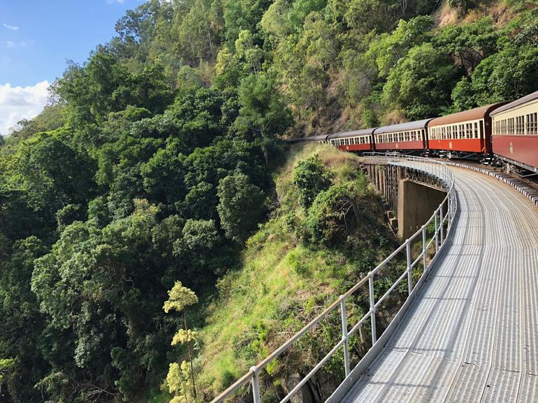 Skip the Line: Kuranda Scenic Railway Gold Class and Skyrail Rainforest Cableway photo 9