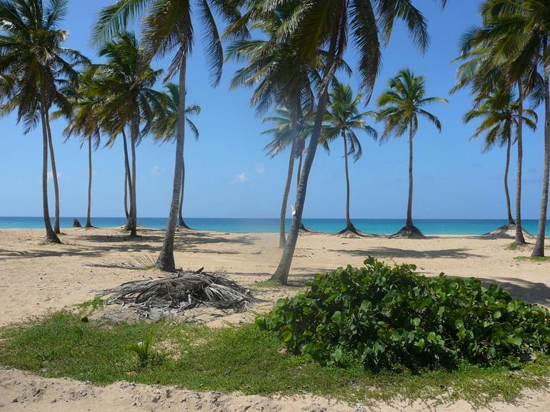 dominican republic 2012 314 - Punta Cana