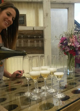 Our awesome hostess at Heidrun Meadery pouring our samples of sparkling mead, Emily G - April 2015