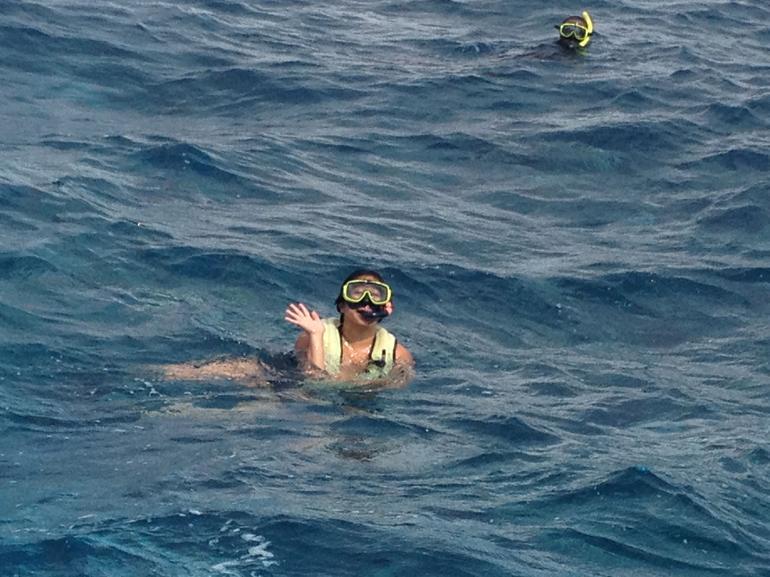 Snorkeling Was a Bonus - Nassau