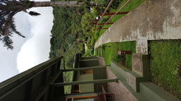 Cloud Forest Lodge - Monte Verda , gators64739 - July 2017