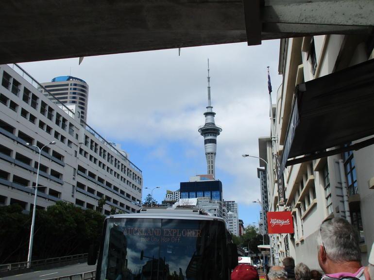 Auckland Explorer: Hop-on Hop-off Tour Including Free Ferry