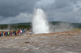 Thar she blows!!! , Bernadette P - July 2014