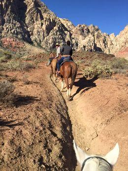 Horseback Ride 4, Jeff - March 2016