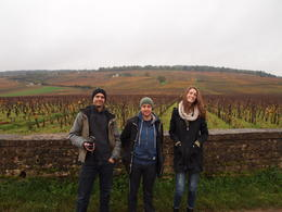 Our group standing in front of the vineyards of Romanée-Conti, which produces the most expensive wine in the world!, Rachel - November 2013