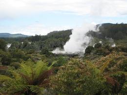 Geyser in Rotorua. - November 2007