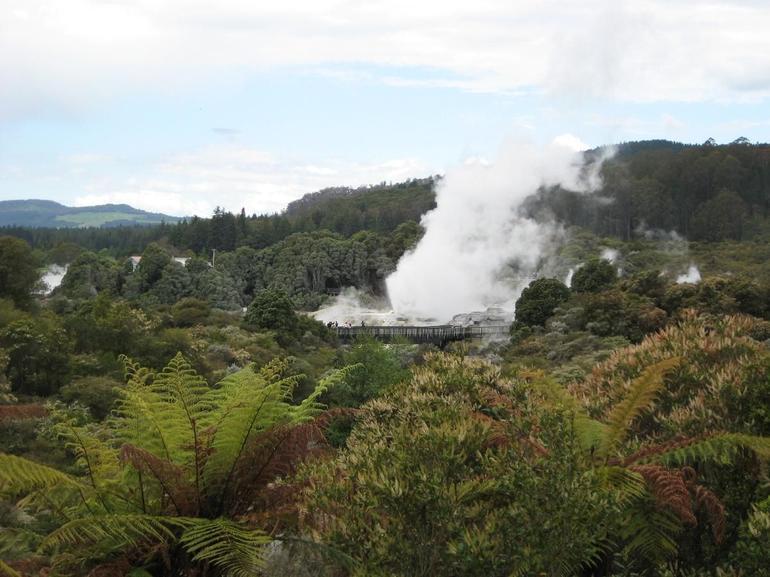 Rotorua Geyser - Auckland
