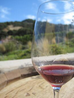 Enjoying a glass of pinot noir at Nicholson Ranch Winery in Sonoma., Jimmy S - October 2010