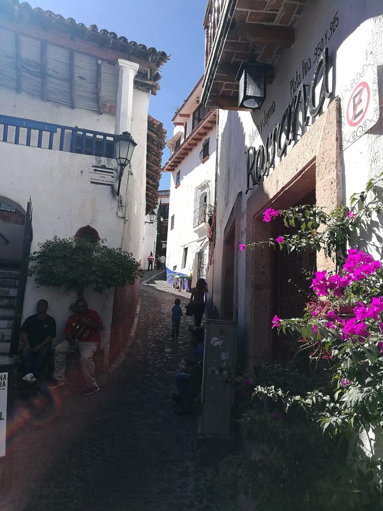 Taxco Private or Group Day Trip by Van from Acapulco