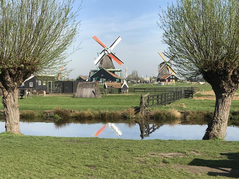 Small Group Zaanse Schans Windmills, Volendam and Old Villages Tour from Amsterdam Including Dutch Schnapps Tasting photo 12