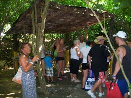 our group walking thru coffee,cigars,chocolate and mamjuanna!!! , tina - June 2012