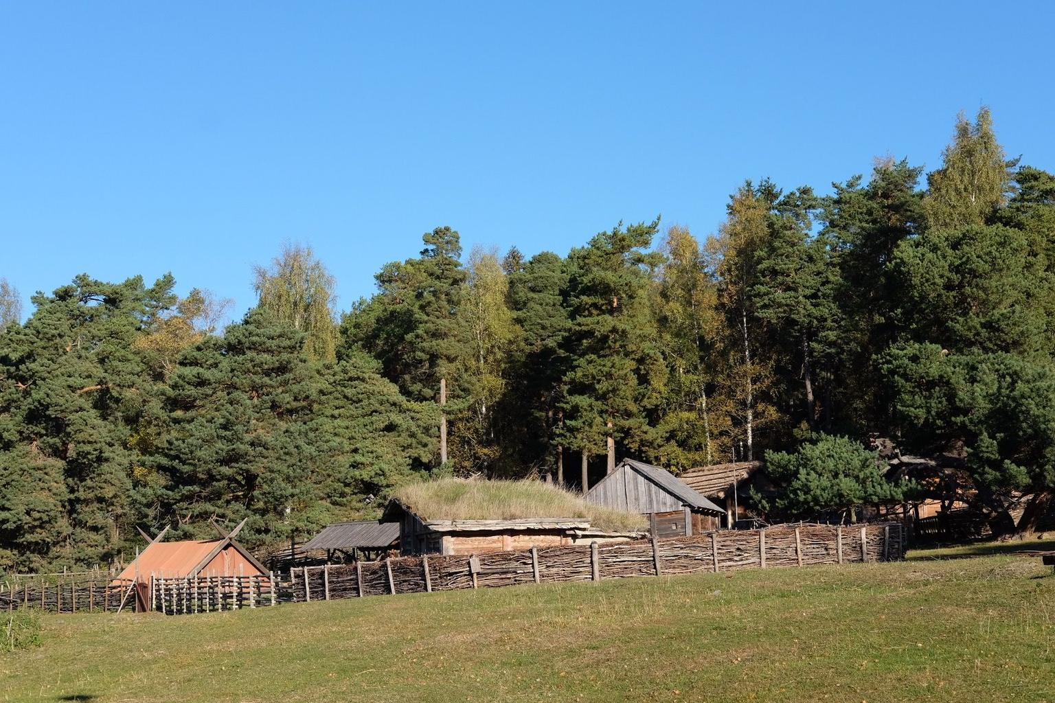 MAIS FOTOS, Viking History Small-Group Trip from Stockholm including Sigtuna and Uppsala: Full Day