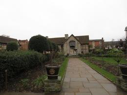 William Shakespeare's garden , Judith B W - January 2017