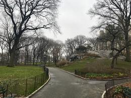 Central Park near the zoo , Thomas M - March 2017