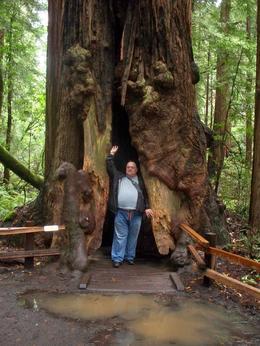Big tree & me., Ed K - May 2010