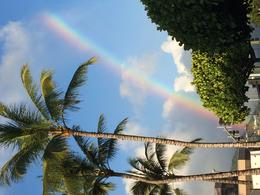 The rainbows over Manoa are the best! Who cares if it rains if you get a picture like this afterwards. , Jody L - August 2014