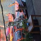 Cruzeiro de luxo com jantar de 4 pratos em Amsterdã, Amsterdam, HOLANDA