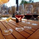 Excursão particular: excursão de degustação de vinhos e tapas em Algarve em motocicleta com sidecar saindo de Portimão, Portimão, PORTUGAL