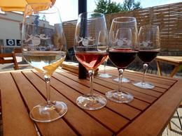 Wine tasting at the vineyard , Diane L - October 2017