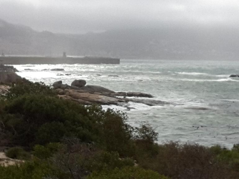 Cape Peninsula Tour from Cape Town photo 17