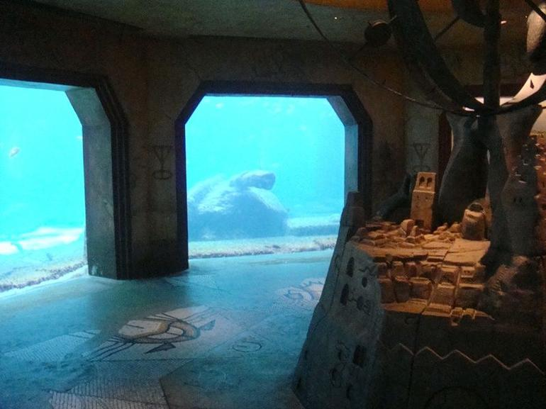 Atlantis aquarium - Nassau