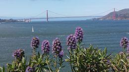 View of Golden Gate from Alcatraz , Kamila C. K - April 2016