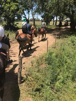 Riding horses around the ranch. , Joel F - December 2016